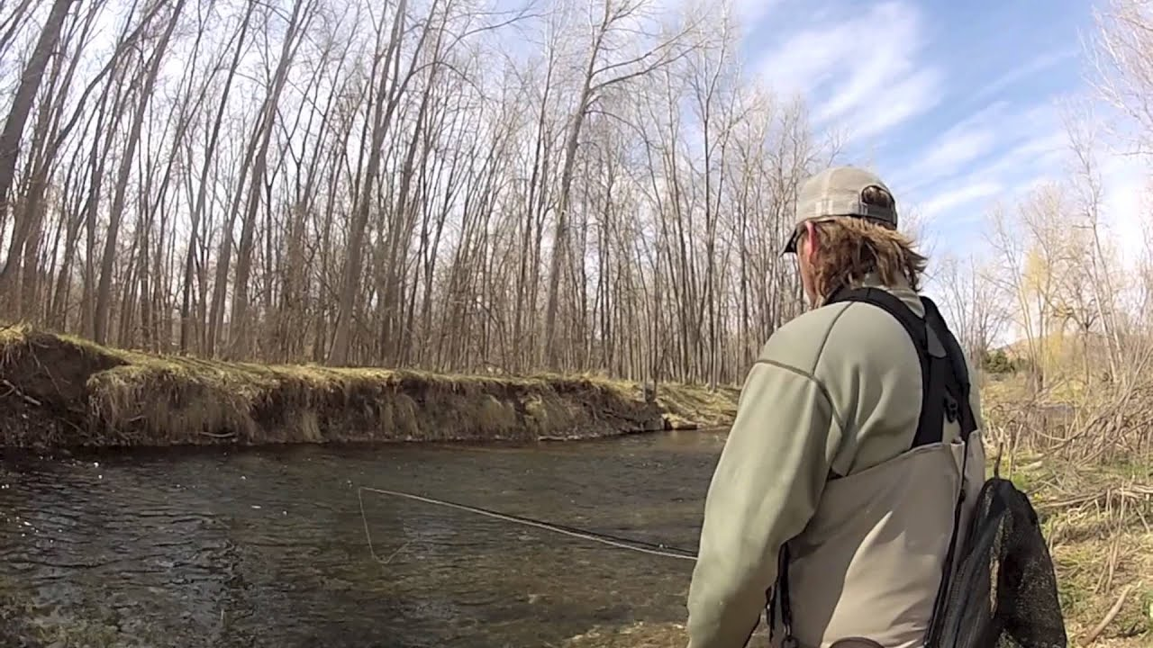 Dakota angler outfitter black hills fly fishing spring for South dakota out of state fishing license