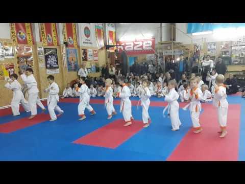 Аттестационный экзамен 09.10.2016 г. по каратэ в клубе Тигренок ч. 1