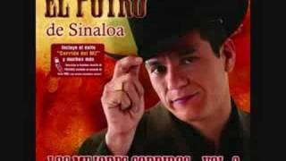 Regalo caro (audio) El Potro de Sinaloa