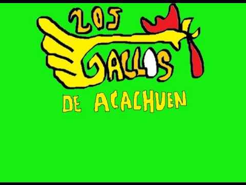 Los Gallos De Acachuen-Amor Imposible