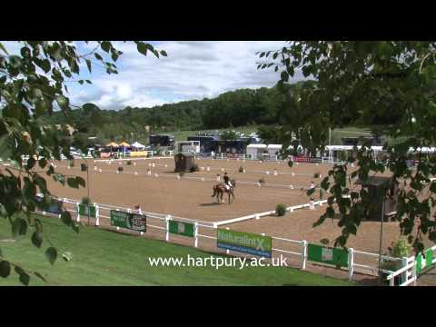 Equine degree student's work experience at the Hartpury Horse Trials