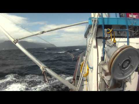 Alaska Commercial Fishing 2011