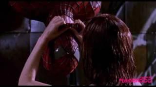 Spiderman (2002) Peter Parker & Mary Jane Watson