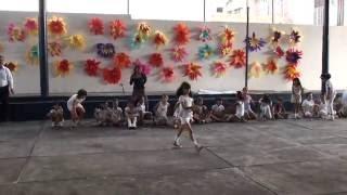 URBANA 909 SHOW DE CUERDAS 2ºA FESTIVAL DE LA MADRE Y