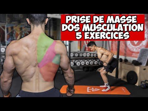 Tibo InShape Entrainement:DOS PRISE DE MASSE MUSCULATION !!
