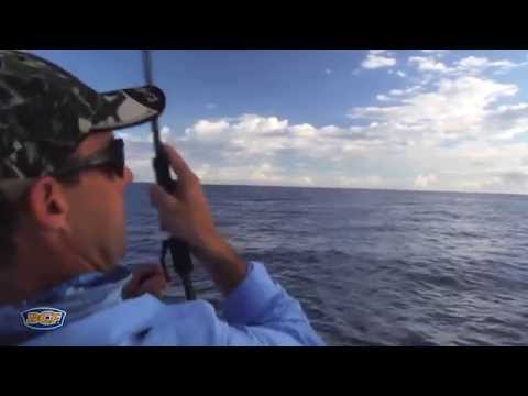Fishing the reef with artificials