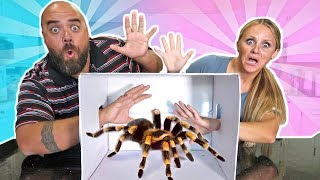 Best What's in the Box Challenge Extreme Parents vs Kids 2017 !!