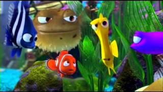 Parodia nemo (Nemo O' Pesc) view on break.com tube online.