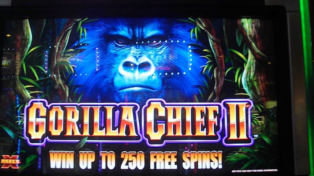 how to win online casino gorilla spiele