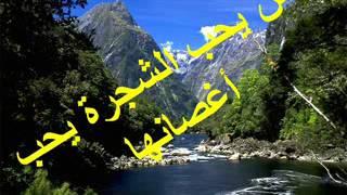 hikam wa amtal hikam wa amtal duration 4 31 21900 views