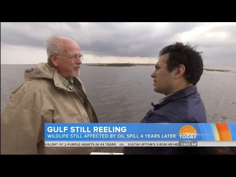 BP Oil Spill Still Affecting The Gulf [PART 2]