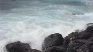 Meer und Palmen auf Teneriffa