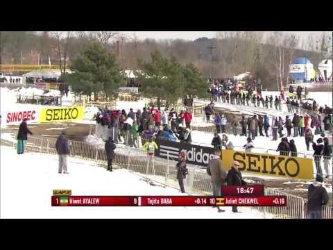 WXC Bydgoszcz 2013 - Senior Women's Race
