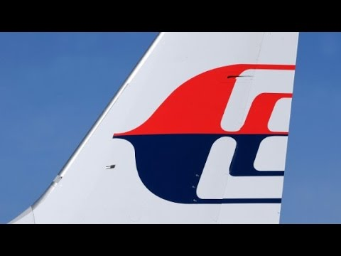 Malaysia plane crashes in Ukraine