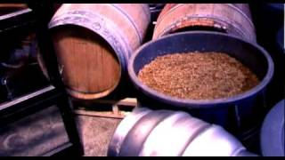 picture of Craft Brewer