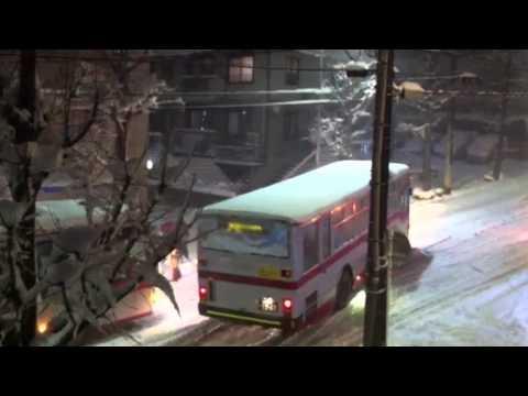Valentine's day 2014 - Heavy snow on Tokyo area
