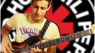 Best FLEA Bass Solos