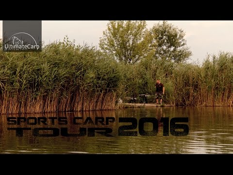 Sports carp Tour 2016
