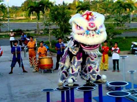 Kỷ lục Guinness Việt Nam (Đôi nữ VĐV duy nhất VN múa lân trên mai hoa thung)