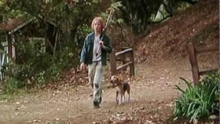 Shiloh (1996) Movie Trailer (Beagle Dog)