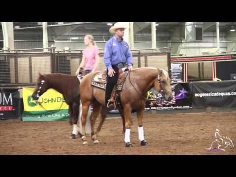 NRHA Derby '14 - Schmersal Reining Horses