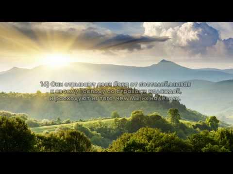 Сура 32 Ас-Саджда (Поклон)
