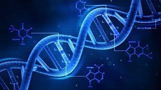 DNA cywilizacji 23.11.2012