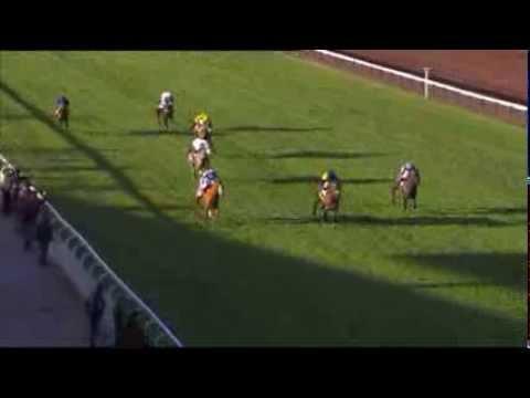 Vidéo de la course PMU PRIX DE SAINTE-TULLE