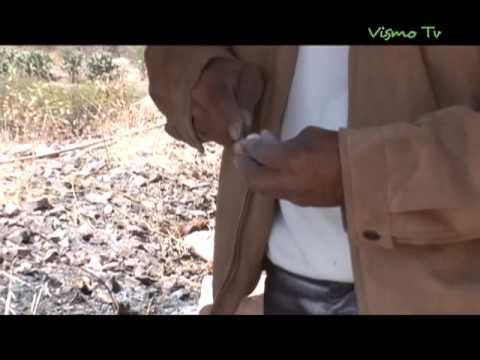 VisMoTV Hecho Artesanía: Tallado de Hueso 1