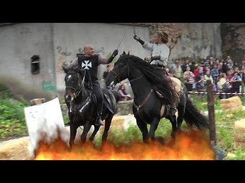 Cascadorii cu cai