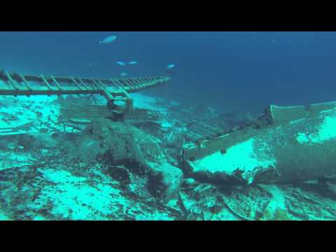 Scuba Diving at Stuart Cove in Nassau - Clifton Wall