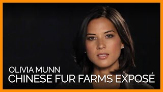 Olivia Munn Exposes Chinese Fur Farms