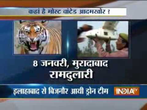 Drone to track maneater tigress in Bijnor, part 3