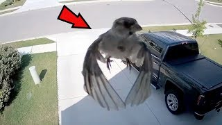 5 Mysterious Videos That CANNOT Be Explained! #3