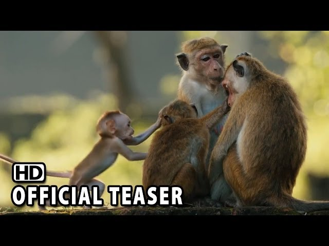 Monkey Kingdom Official Teaser #1 2015 HD
