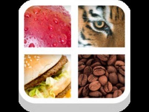 Close Up Pics - Level 7 Answers