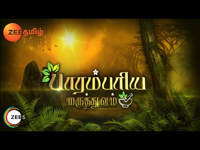 Paarambariya Maruthuvam - Episode 300 - April 07, 2014