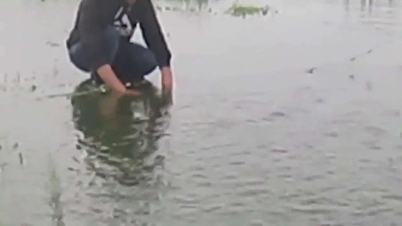 ржачное видео про рыбаков