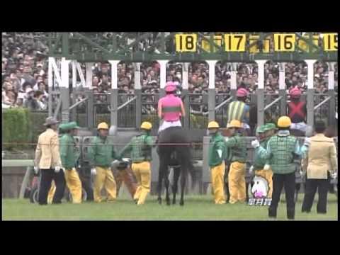 2013年 皐月賞 / ロゴタイプ