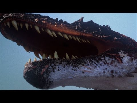 The BEST of Discovery's Dinosaurs