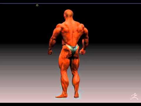 IFBB Pro Bodybuilder Flex Lewis - quick Zbrush spotlight render for proportions testing