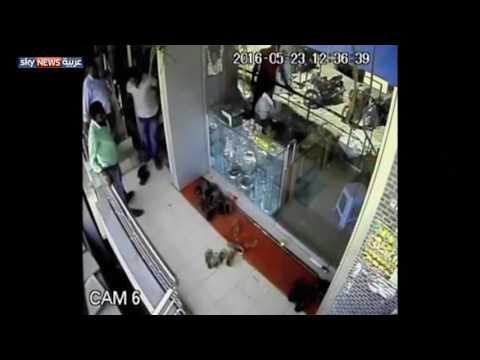 """شاهد القرد """"اللص"""" يسرق أموالا من متجر"""