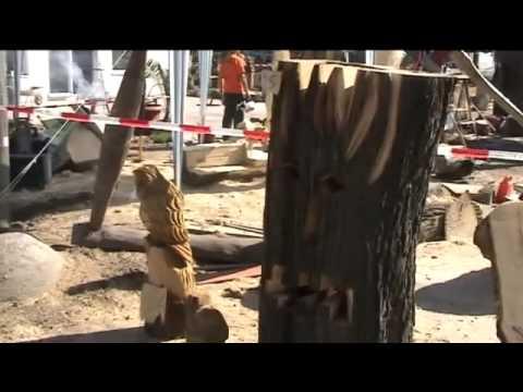 Mistrzostwa w rzeźbieniu piłą łańcuchową 1