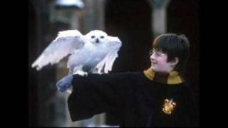 Harry Potter And The Sorcerer's Stone Soundtrack 18