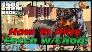 GTA 5 How To Walk & Play Fetch With Chop For 100%
