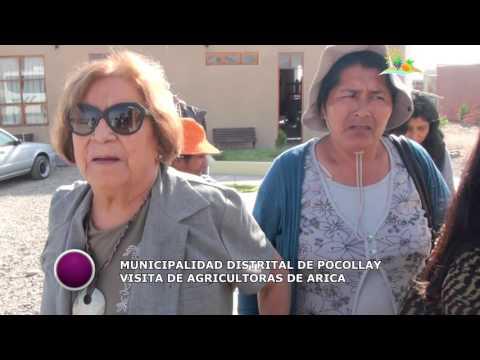 AGRICULTORAS DE LOS VALLES DE ARICA VISITAN POCOLLAY