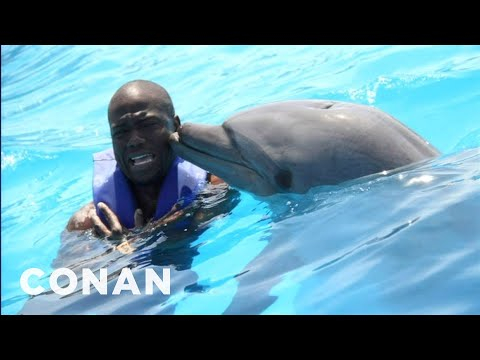 Kevin Hart: Dolphins Are Racist! - CONAN on TBS