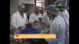 Elaboración de conserva de fruta al jugo