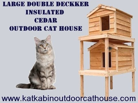 Large Double Decker Insulated Cedar Outdoor Cat House