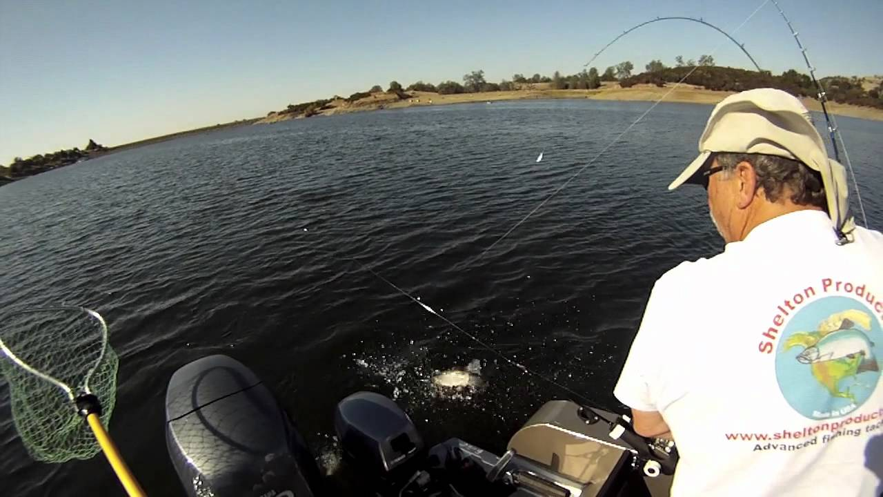 Lake amador trout fishing bait and trolling gopro youtube for Lake amador fishing